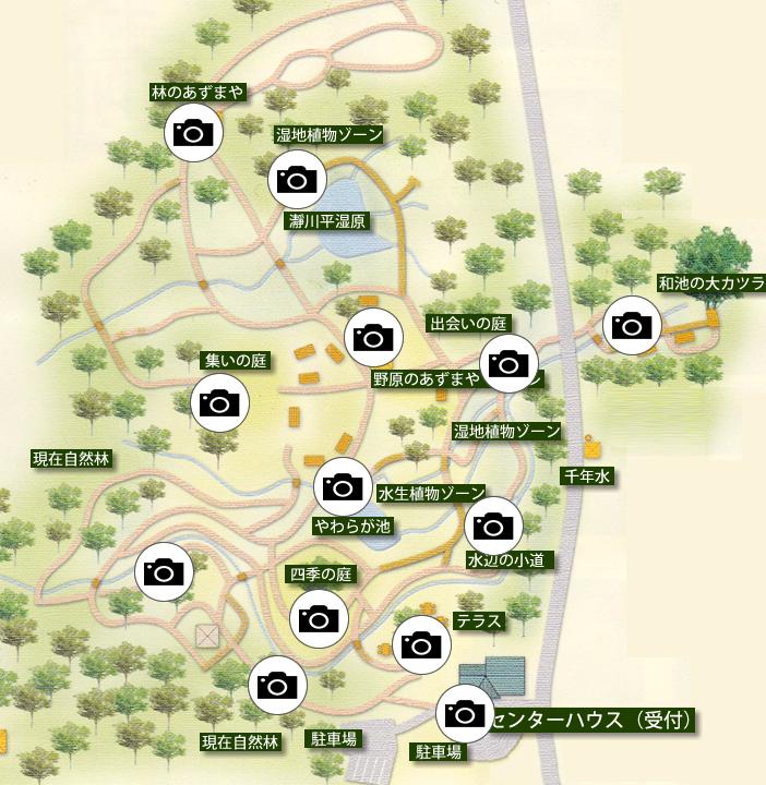 但馬高原植物園:園内マップ